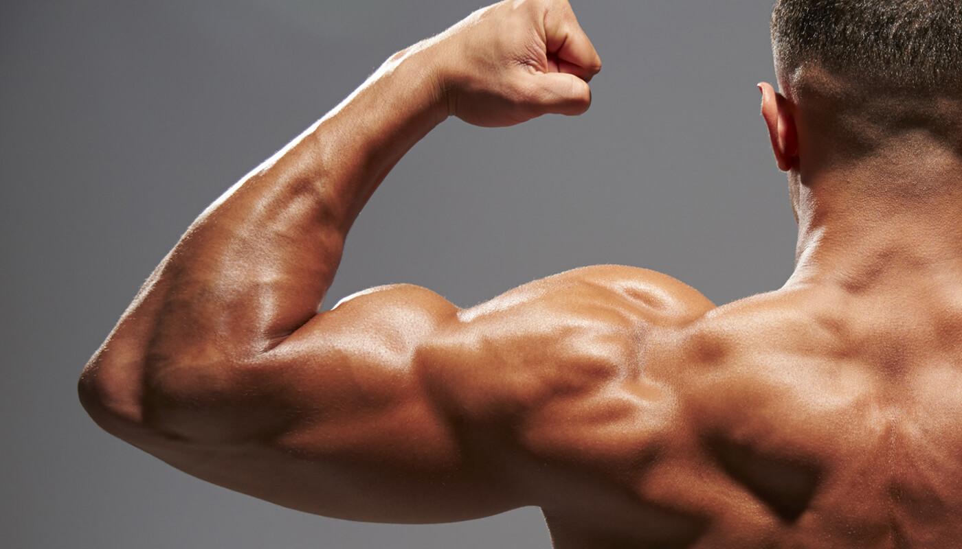 large biceps