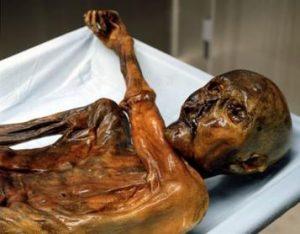 otzi the wet mummy