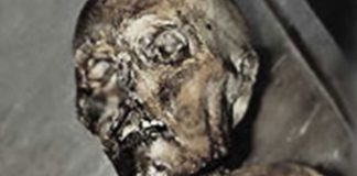 Close up of Ötzi the Iceman