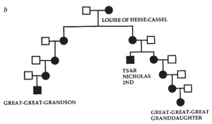 Family tree showing the relationship between the Tsar and the reference samples