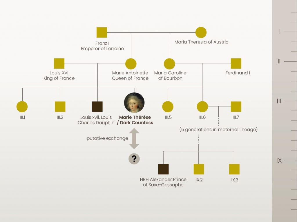 The pedigree of the French Royal family