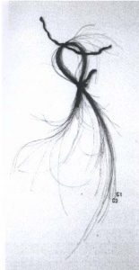 Strands of Napoleon's hair from the Vivant Denon reliquary