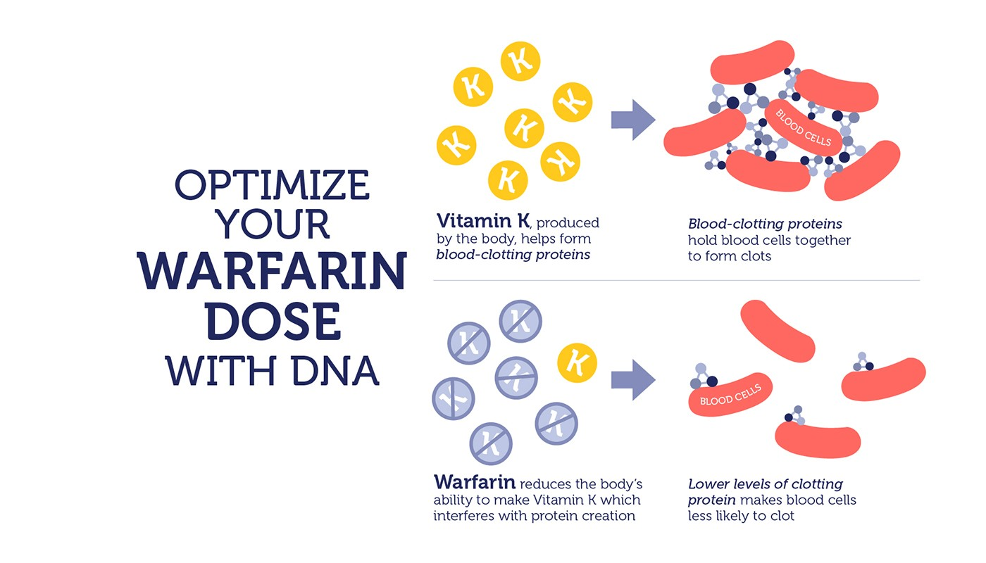Did you know DNA can help with warfarin dosing? | Did You